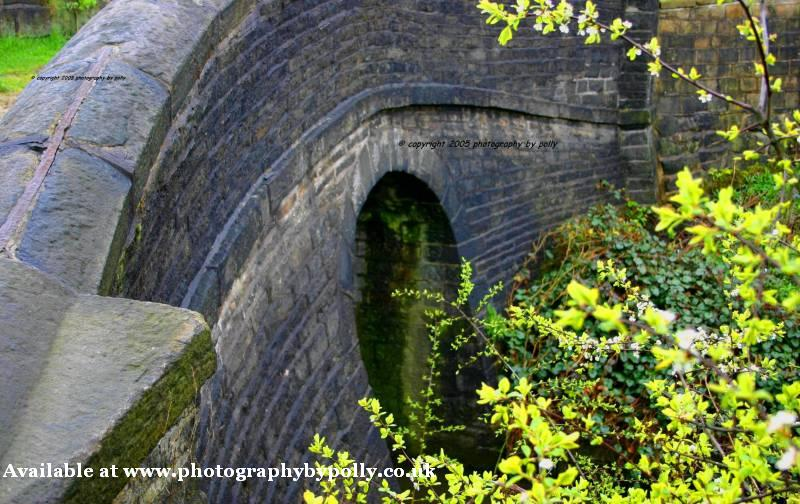 Bowed Bridge
