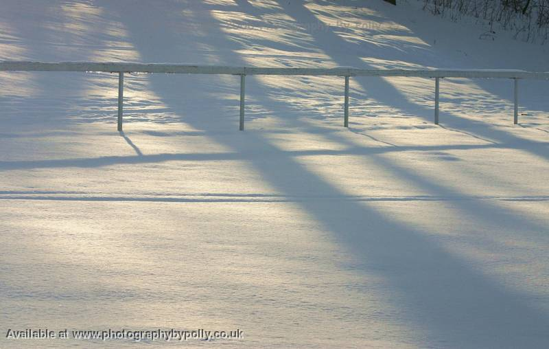 Snowy Shadow Fields