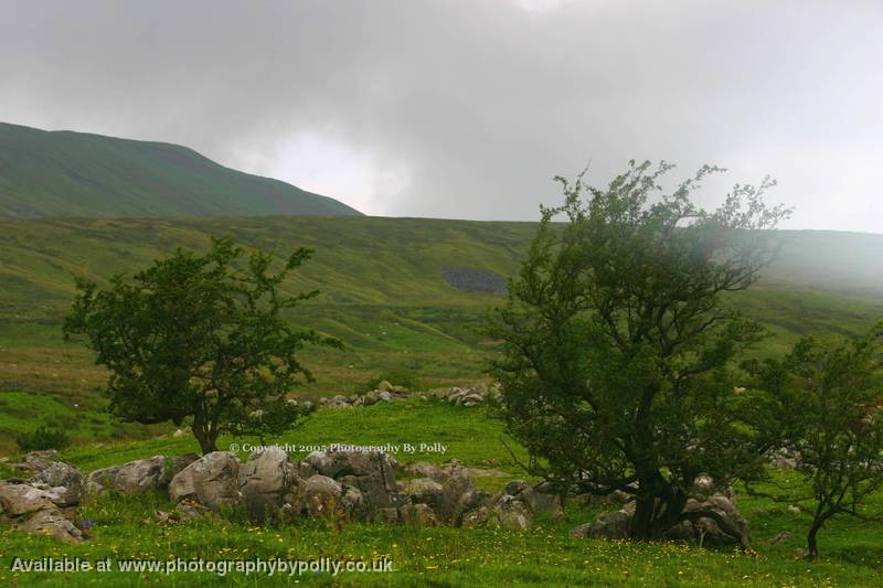Ingleborough Clouds
